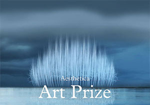 ART COMPETITION - Aesthetica Art Prize Competition 2017