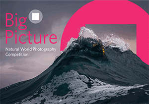 PHOTOGRAPHY COMPETITION - BigPicture Natural World Photography Competition 2018