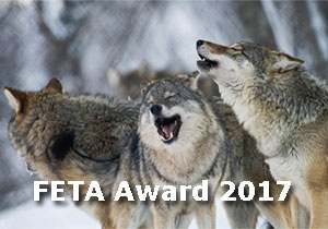 PHOTOGRAPHY AWARD - FETA Awards 2017