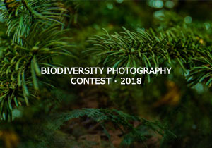 PHOTOGRAPHY COMPETITION - FIIN - Biodiversity Photography Competition 2018