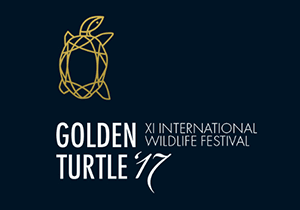 DESIGN CONTEST - Golden Turtle Design Contest 2017