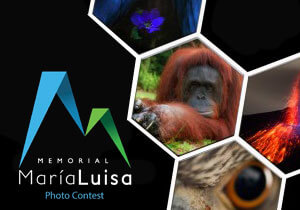 PHOTO CONTEST - Memorial Maria Luisa Photo Contest 2017