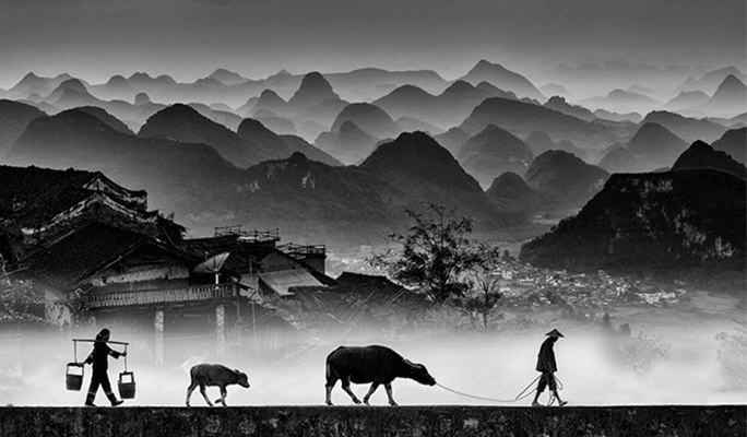 Monochrome Awards 2020 International Black and White Photography Contest
