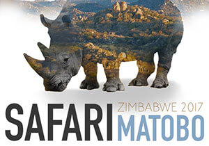 DESIGN COMPETITION - Safari by Eleven: Architecture and Design Competition