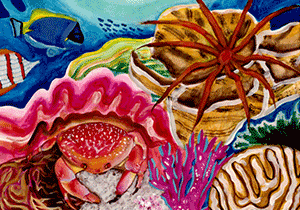 ART COMPETITION - Science Without Borders Challenge 2020: Conserve Coral Reefs