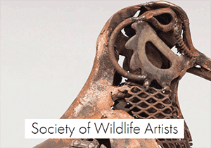 ARTIST AWARD - Society of Wildlife Artists 2017