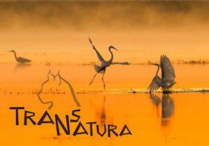 PHOTOGRAPHY COMPETITION - TransNatura 2017 International Nature Photo Contest