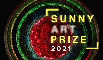 Sunny Art Prize 2021